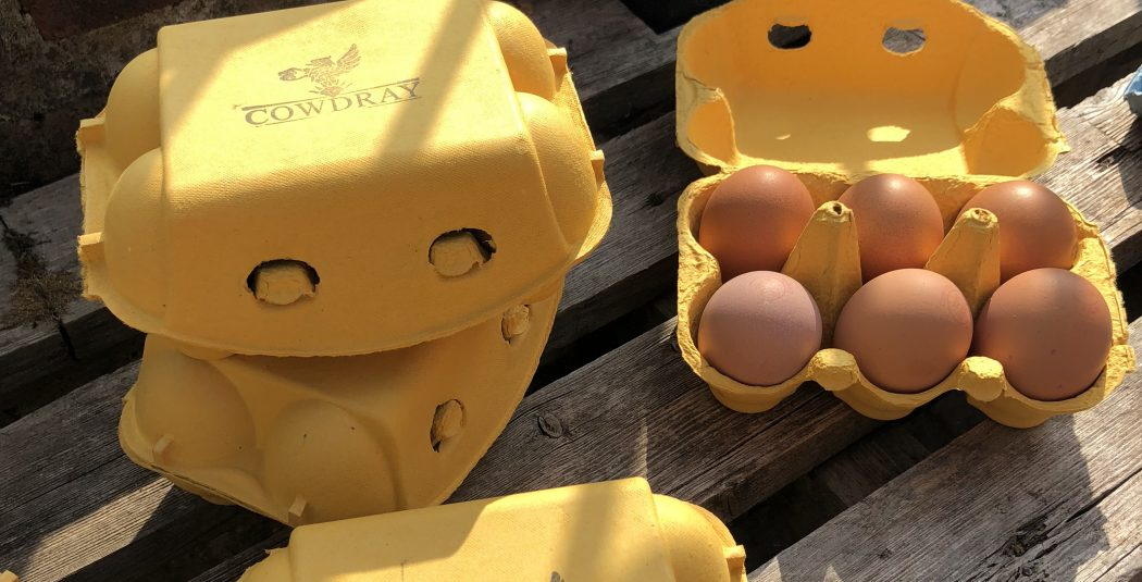Egg box 2